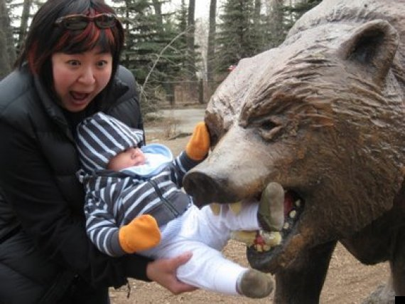 zoo bear attack