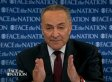 Chuck Schumer: Left Must 'Admit There Is Second Amendment' (VIDEO)