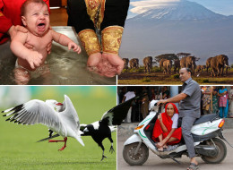 Pictures Of The Day Live: 18th December 2012