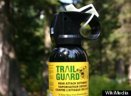 Disabled Woman Traumatized By Bear Spray Attack