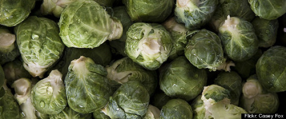 BRUSSELS SPROUTS OVERDOSE