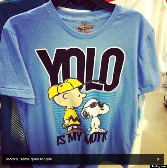 drak yolo profits