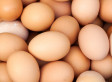 Amazing Eggs: Busting the Cholesterol Myth