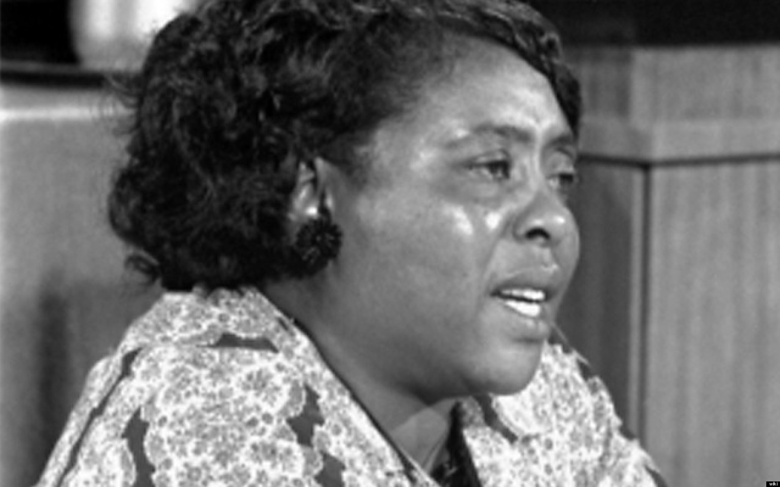 fannie lou hamer Fannie lou hamer is a woman you should know her brave and heroic words were such a paradigm shift in the country's power structure in addressing race relations, that president lyndon b johnson cut in on her live testimony to divert attention away from the convention.