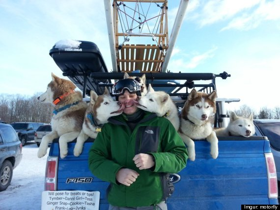 sled dogs lick mans face