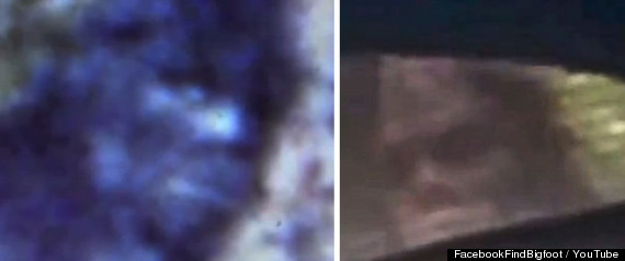two alleged bigfoot creatures from 1967 left and 2012 right a face