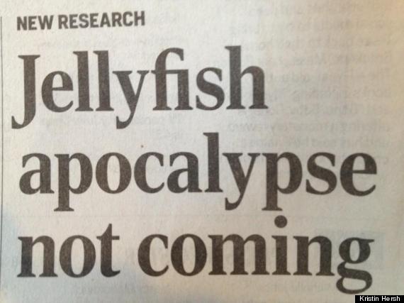 jellyfishapocalypse