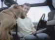 LA Animal Services Dog Adoption Ad Is Super Cool (VIDEO)