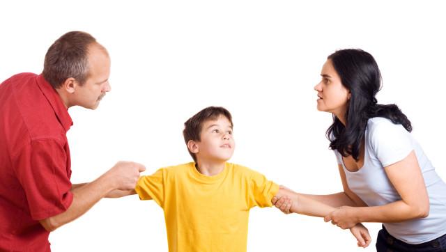 Libro Los Hijos Del Divorcio Descargar Gratis pdf