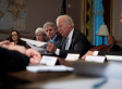Joe Biden Gun Control Recommendations: Background Checks To Be Top Priority