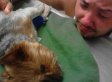 20 Grown Men Freaking Out Over Dogs (SLIDESHOW)