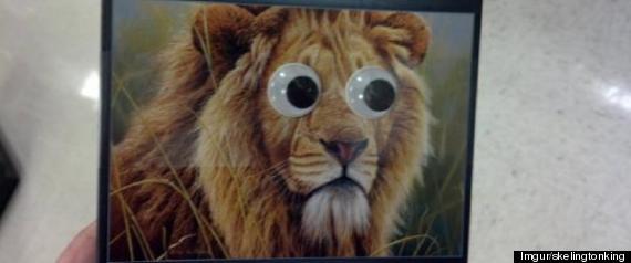 googly lion