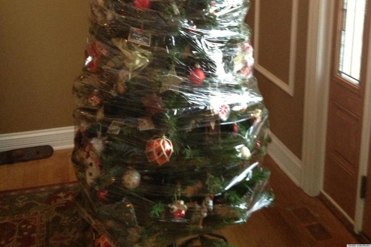 Is It Time To Take Down Your Christmas Tree Yet?
