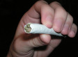 Marijuana Study Tying Teens' Pot Use To I.Q. Drop Is Flawed, New Paper Suggests