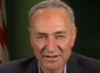 Chuck Schumer: NRA Is 'A Fringe Group' (VIDEO)