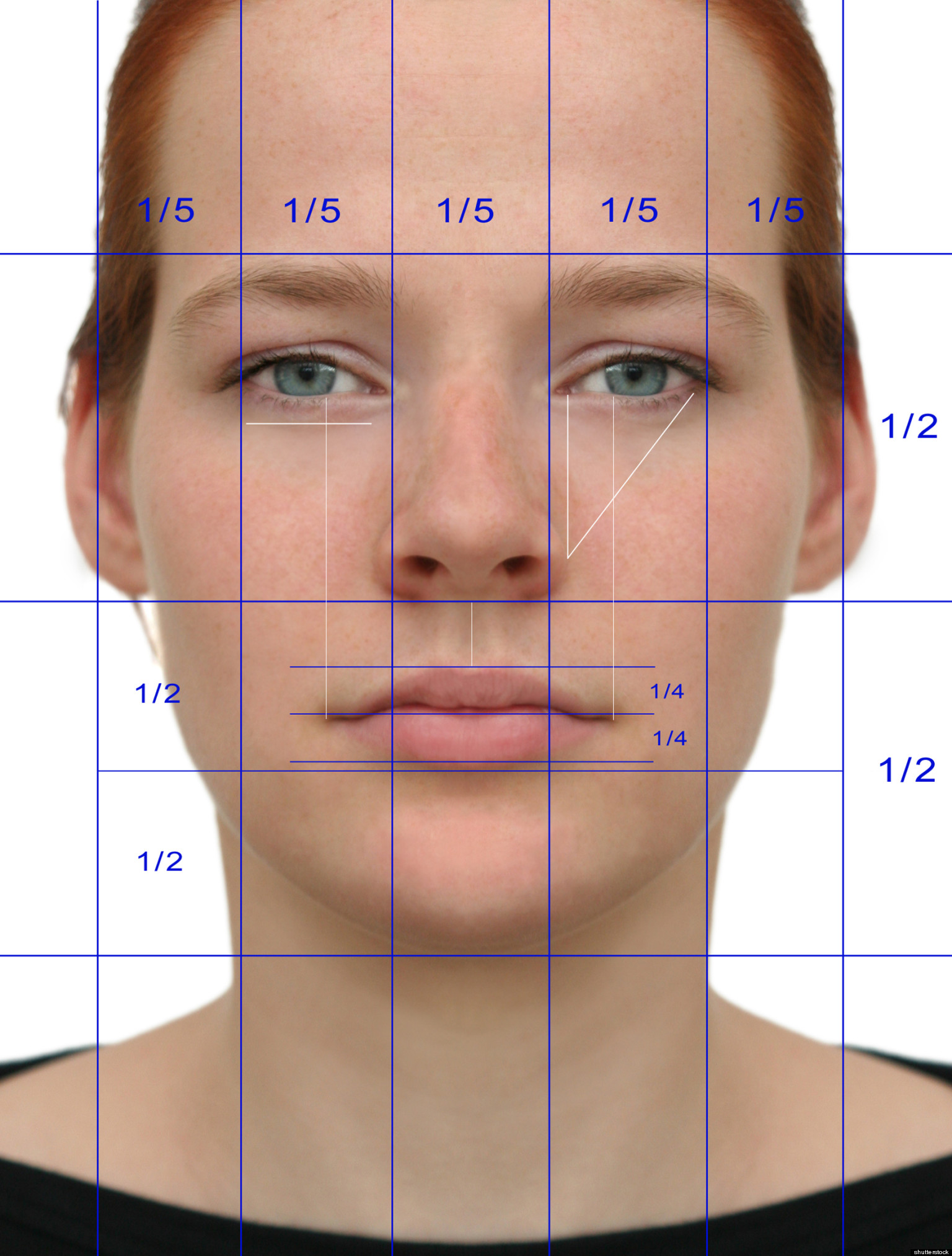 Beauty Studies Show Ratios Explain Human Attractiveness ...