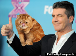 Simon Cowell Rules Out Return To X Factor - What IS The Plan?