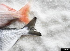 pescadomercurio