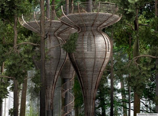antony gibbon 39 s roost treehouses channel lothl rien from