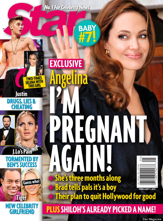 Angelina Jolie Pregnant With 7th Child? (REPORT)