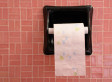Mahanoy Area High School Students In Pennsylvania Must Request, 'Sign Out' Toilet Paper