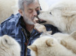 Werner Freund, German Wolfman, Feeds Wolves From His Mouth As Pack's 'Alpha Male' (VIDEO) (PHOTOS)