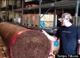 Giant Cigar