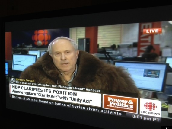 tom flanagan cbc