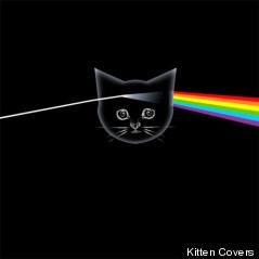 kitten floyd cover