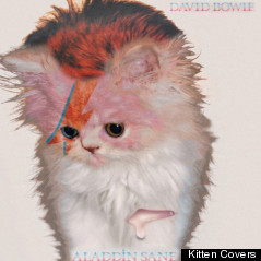 david bowie cover kitten