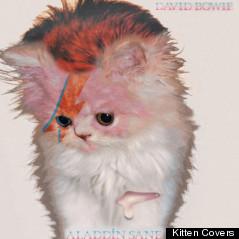 david bowie cover kitten