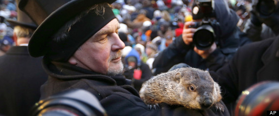 Groundhog Day 2013