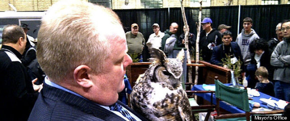 ROB FORD OWL