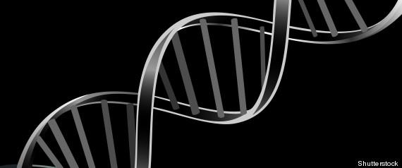 RNA LIFE