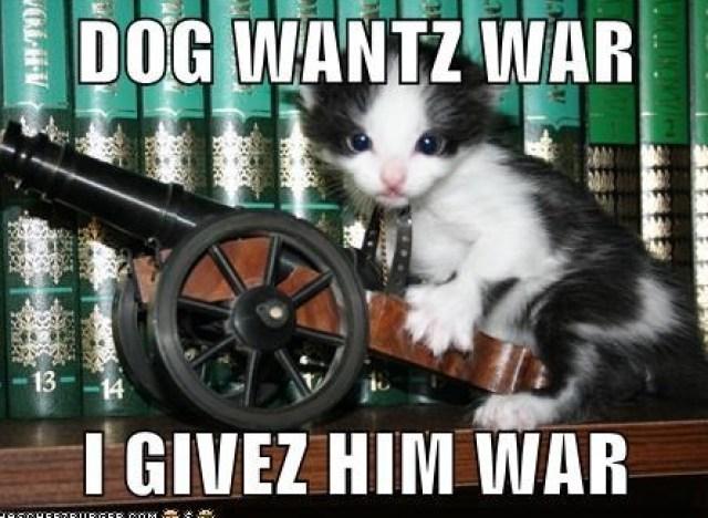 modern lol catt
