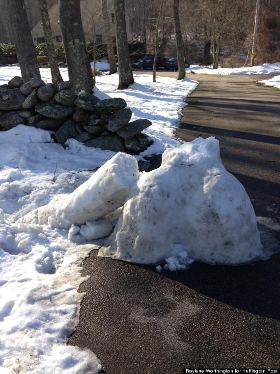 snow penis down