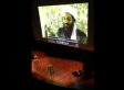 Emlyn Hughes, Columbia Professor, Strips, Plays 9/11 Footage, Attacks Stuffed Animals (VIDEO)